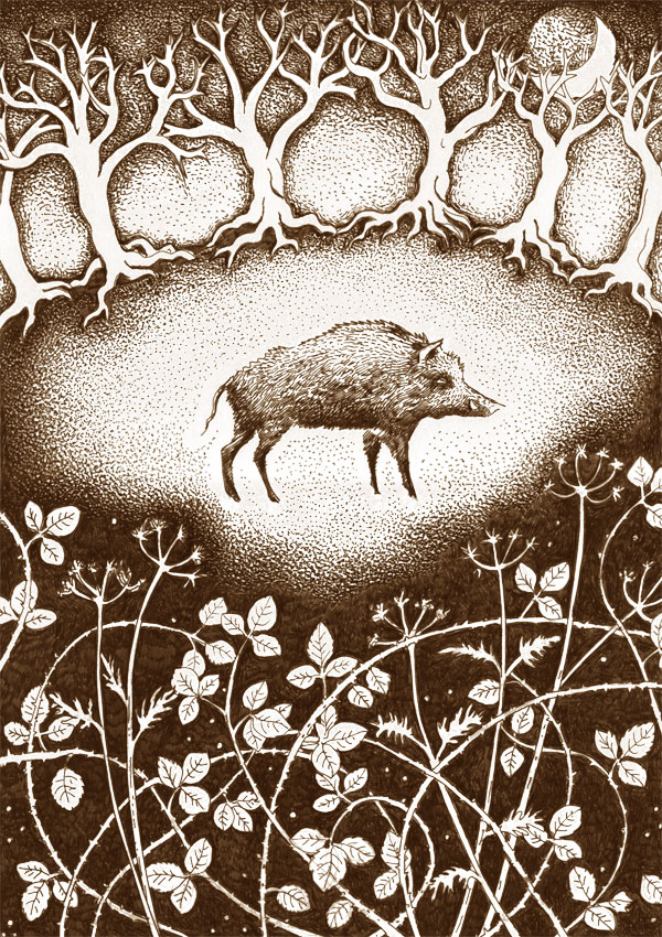 Wild Boar in the Bracken