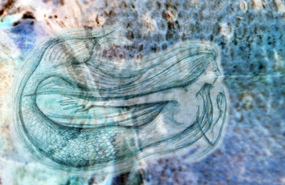 fish-scale-and-mermaid-for-web.jpg