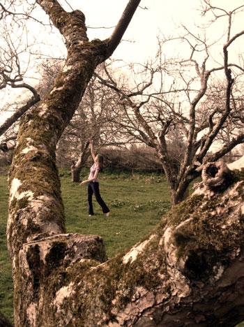 Orchard dance
