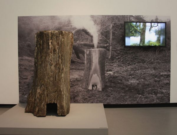 Oak Hearth - David Nash