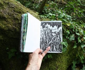 Forest sketchbook - bat forest