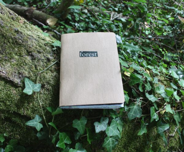 Forest Sketchbook