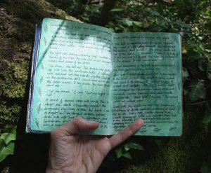 Forest sketchbook - If You Are Lost You May Be Taken