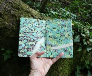 Forest sketchbook - Seima Forest