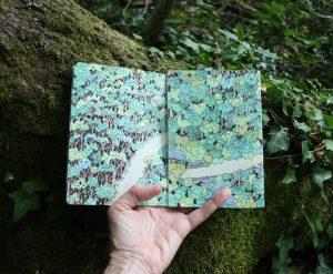 Forest sketchbook - Seima Forest