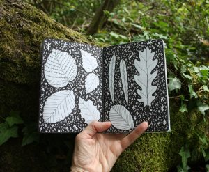 Forest sketchbook - pen and ink leaves