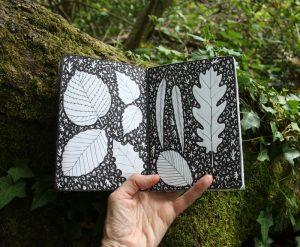 Forest sketchbook - pen and ink leaves