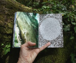 Forest sketchbook - photo and spiral writing