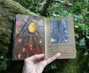 Forest sketchbook - seed in the leaflitter