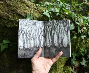 Forest sketchbook - pen and wash