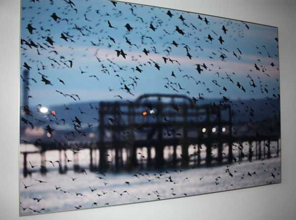 Pier and starlings by Chris Durham.