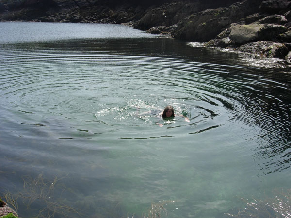 Swimming in the sea off Skokham with seals and jellyfish.