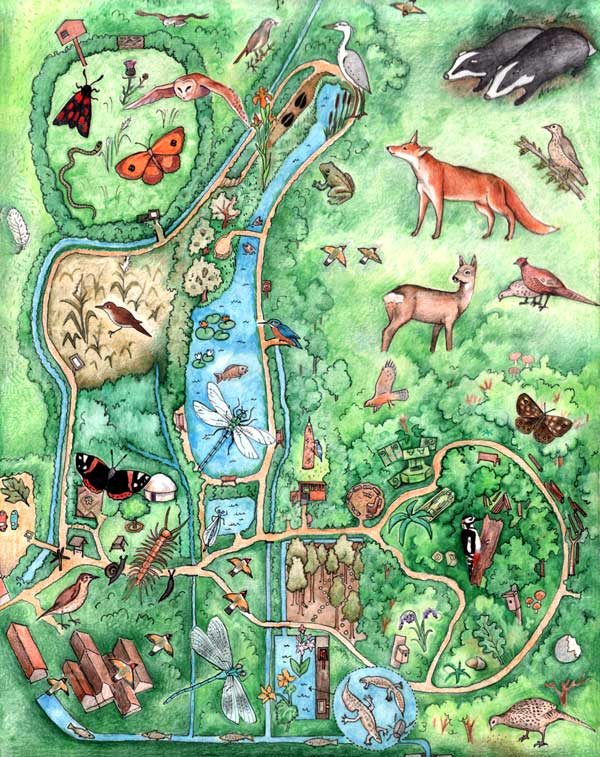Wildlife Trust Children's Map