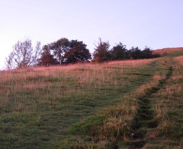 Sunrise over Wolstonbury Hill