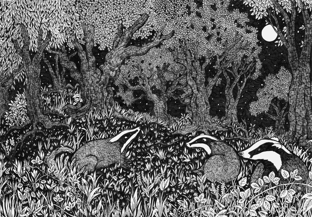 Badger scene