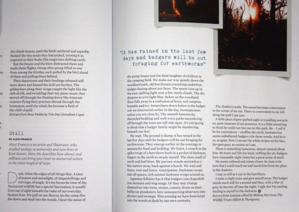 Still - Writing Piece in The Simple Things Magazine