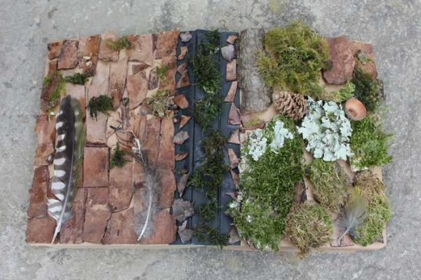 Bark and moss covered diary