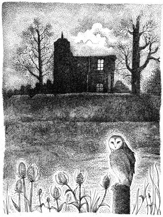 The barn owl of Baconsthorpe