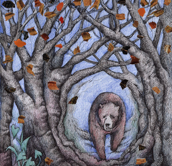 Spriit Bear