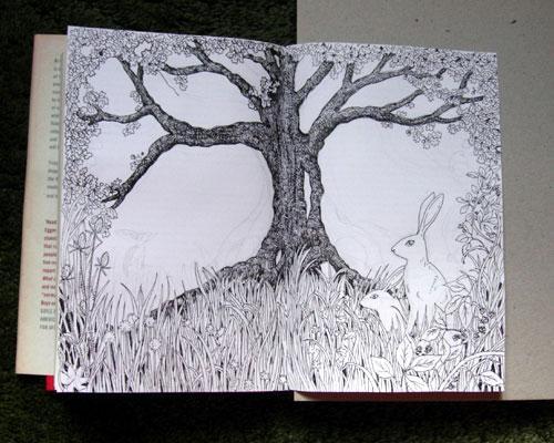 Board Beneath Drawing
