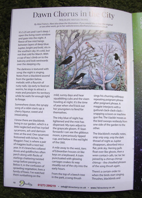 Dawn Chorus in the City Article
