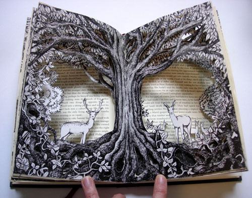Cool Book Cover Art : Forest altered books reflections alexi francis