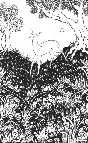 Deer in the Undergrowth
