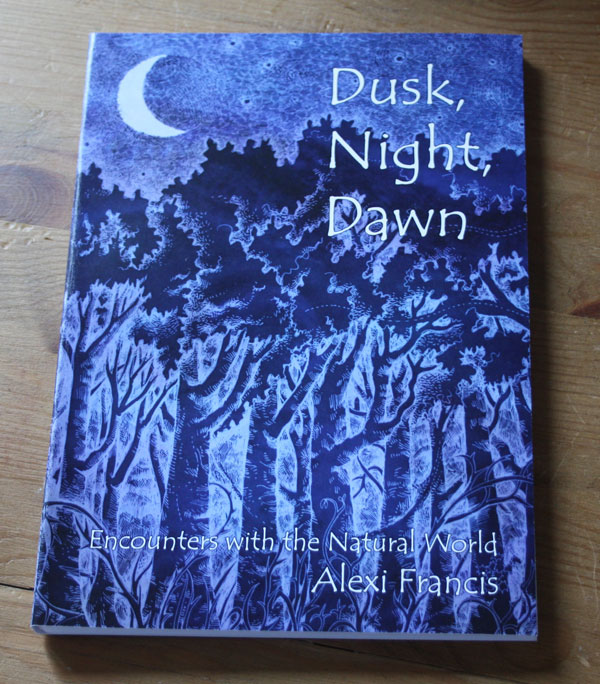 Dusk Night Dawn book
