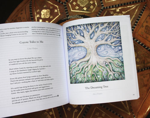 The Dreaming Tree in Minerva Rising