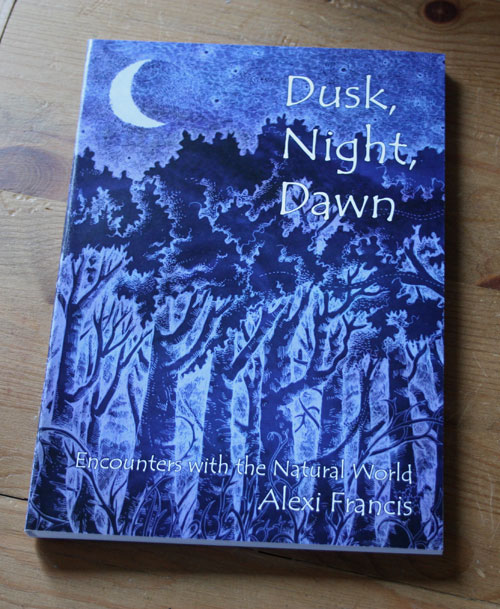 Dusk, Night, Dawn book