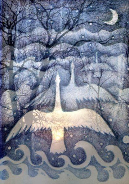 Echoing Swans Greetings Card