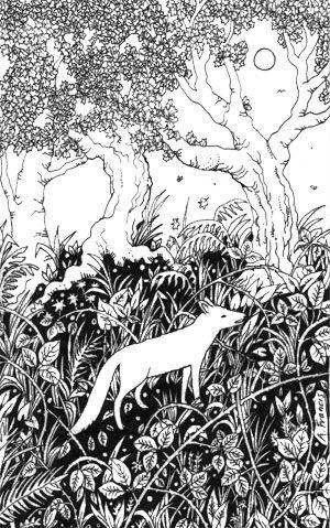 Fox in the Undergrowth