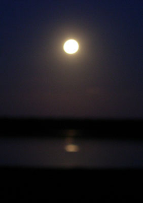 Havergate Island Moon