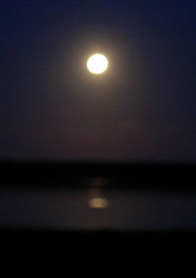 Havergate Island Moon