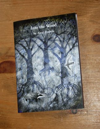Into the Woods Book