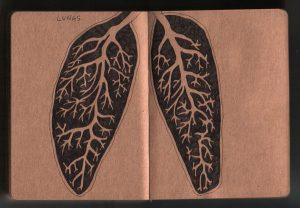 Lungs - diary drawing