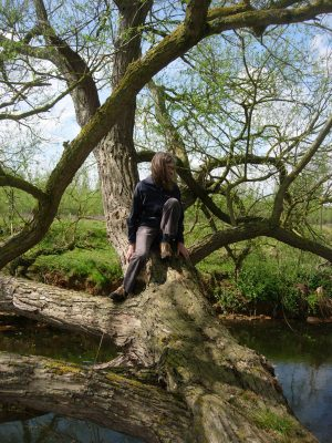 In the willow tree