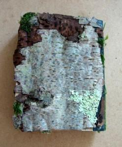 Moss Journal