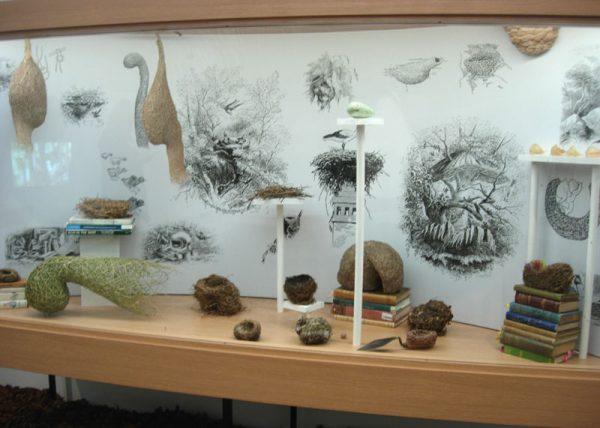 Natural Selection Exhibition