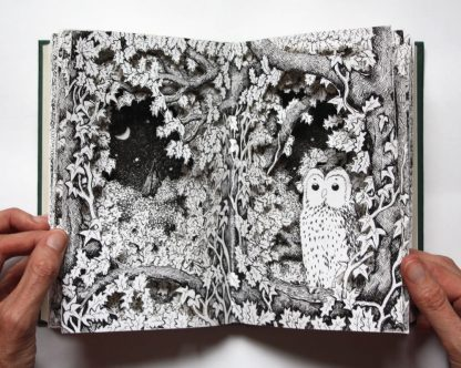 Owl Altered Book