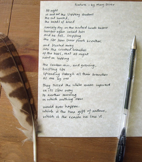 Nature Poem by Mary Oliver