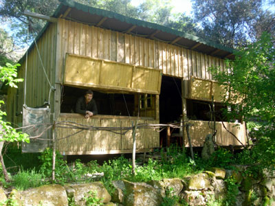 The Boar Hide Pego Ferreiro