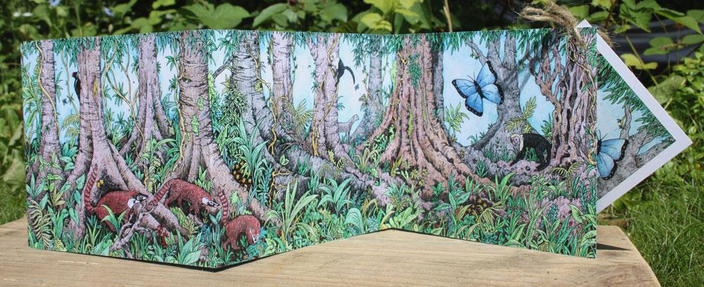 Rainforest concertina Card
