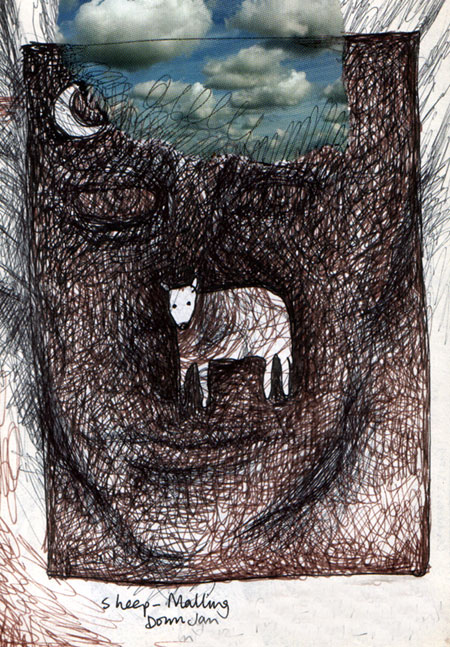 Ghost Faced Sheep