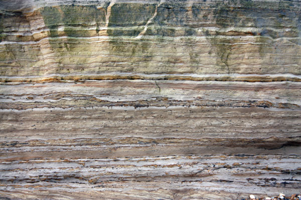 Cliff strata - Pett Level beach