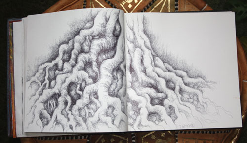Tree Roots in Sketchbook