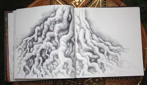 Tree Roots in Sketchbook